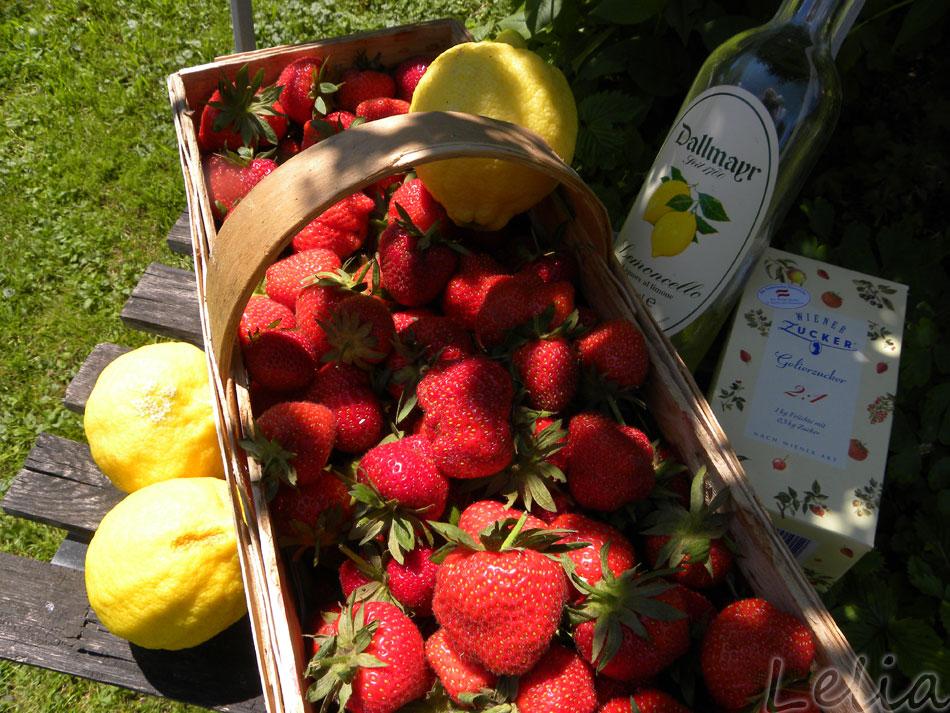 Zitronen-Erdbeermarmelade...die Zutaten