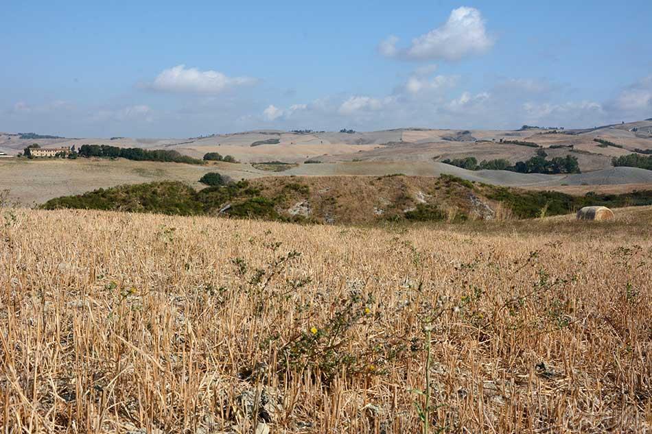 Die sehr karge, aber unglaublich schöne, friedliche Landschaft um Volterra