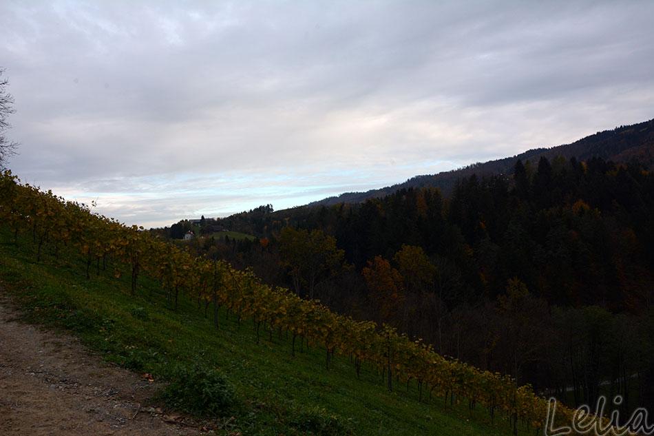 Altenbachklamm