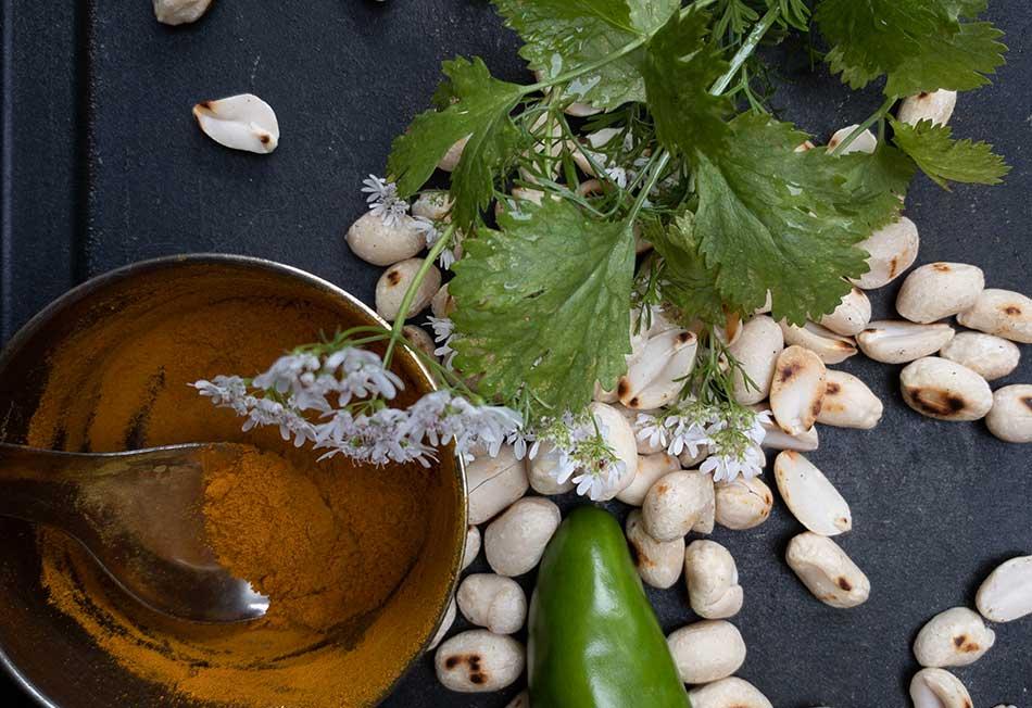 Kräuterdip, Kräuteröl, Kräuterchutney, Kräuter … Kräuter …